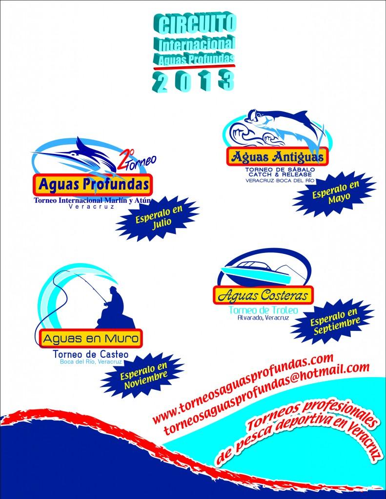 ANUNCIO LOGOS CIRCUITO AP 2013