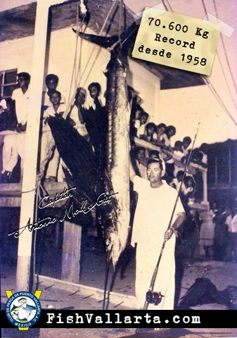 Record of Sailfish since 1958 on International Fishing Tournament Marlin & Sailfish Puerto Vallarta.